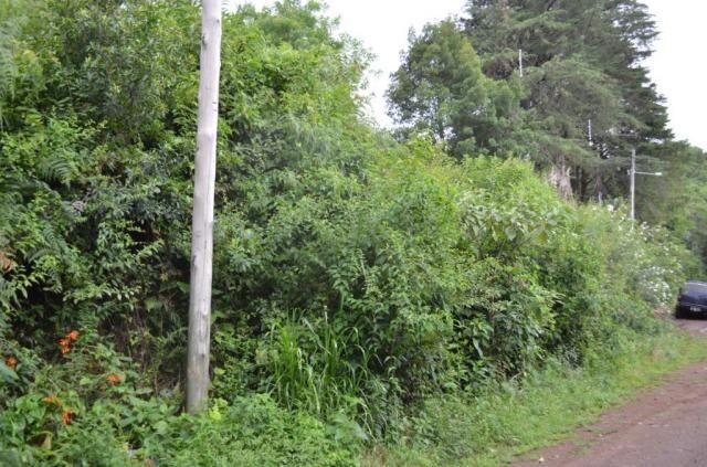 Terreno à venda, 888 m² por r$ 170.000,00 - vale dos pinheiros - gramado/rs