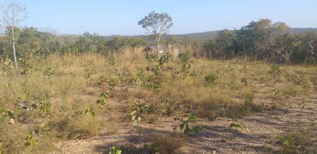 Terreno estrada do manso