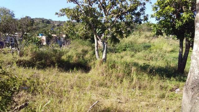 Lu Terreno no Bairro Monte Alegre em Cabo Frio - Foto 3
