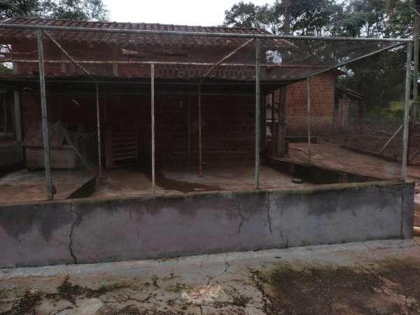 Rural sitio - Bairro Zona Rural em Jataizinho - Foto 9