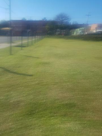 Corte de grama e limpeza de terreno - Foto 3