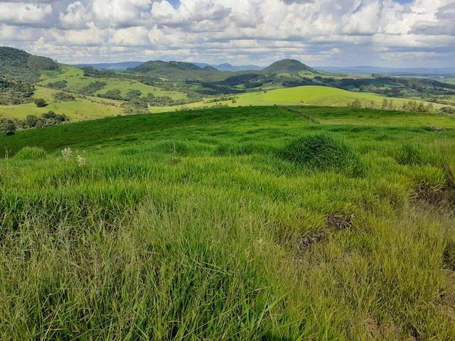 Fazenda Agricultura e Pecuária-Completa Arrendamento - Foto 3