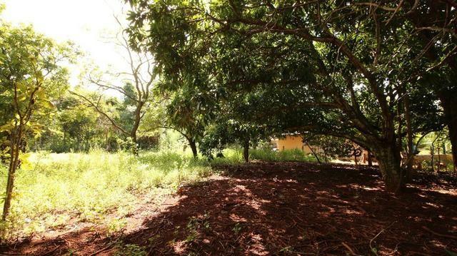 Área 3.775 m² Próximo a UFG Campus Samambaia P/ Lazer e moradia! Oportunidade - Foto 15