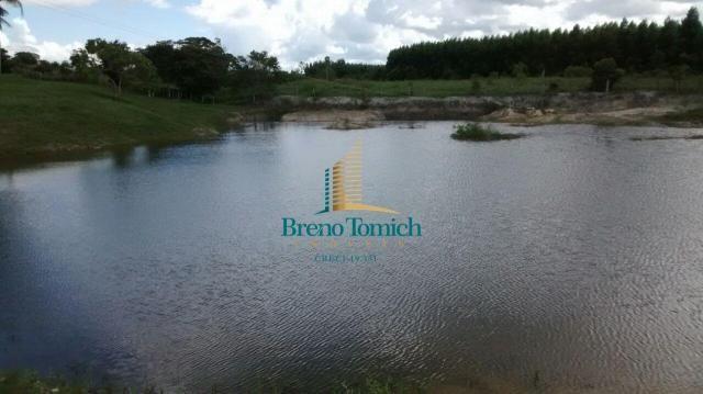 Fazenda à venda, 890000 m² por r$ 1.300.000 - teixeira do progresso - mascote/ba - Foto 7