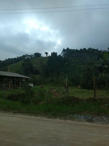 Oportunidade, sitio de 17.000 m² no Caetés interior de Camboriú 14 km da cidade por apenas - Foto 6