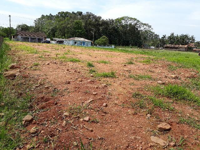 Terreno Lindo e Barato para Montar sua Chácara, Aceito Carro - Foto 6