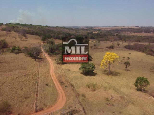 Fazenda à 35 km Goiânia (Beira Rio e Plana)
