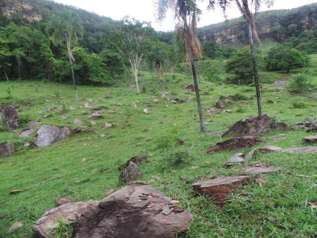Fazenda 15 Alqueires Municipio Cocalzinho Aceita Imovel até 200 mil - Foto 17