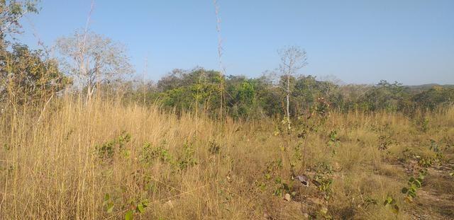 Terreno estrada do manso - Foto 3