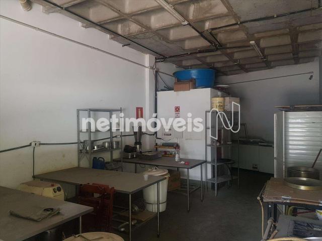 Loja comercial para alugar em Grajaú, Belo horizonte cod:788315 - Foto 17