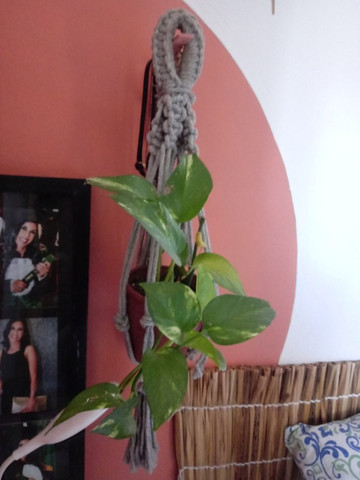 Macrame para plantas  - Foto 3