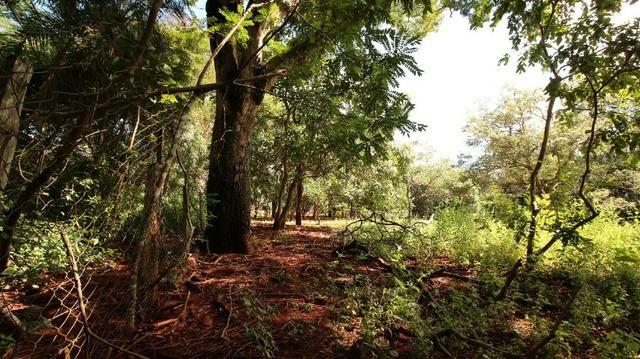Área 3.775 m² Próximo a UFG Campus Samambaia P/ Lazer e moradia! Oportunidade - Foto 12