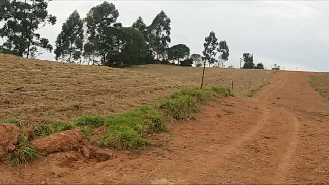 Terrenos Rurais, Ótima Topografia - Foto 4