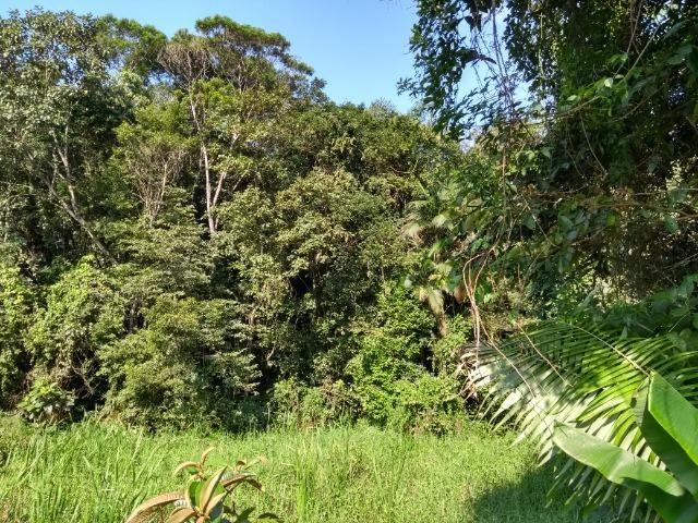 Terreno Para Chácara com 3000 mts em Area Rural de Piçarras S/C - Foto 10