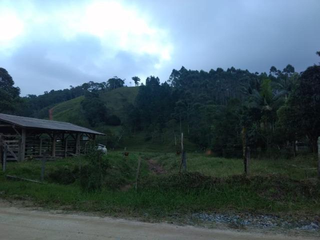 Oportunidade, sitio de 17.000 m² no Caetés interior de Camboriú 14 km da cidade por apenas - Foto 8