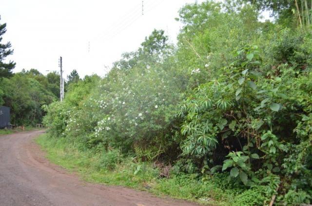 Terreno à venda, 888 m² por r$ 170.000,00 - vale dos pinheiros - gramado/rs - Foto 4