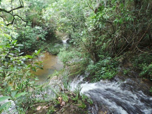 Fazenda 132 Alqueires Municipio Cocalzinho Aceita proposta - Foto 18