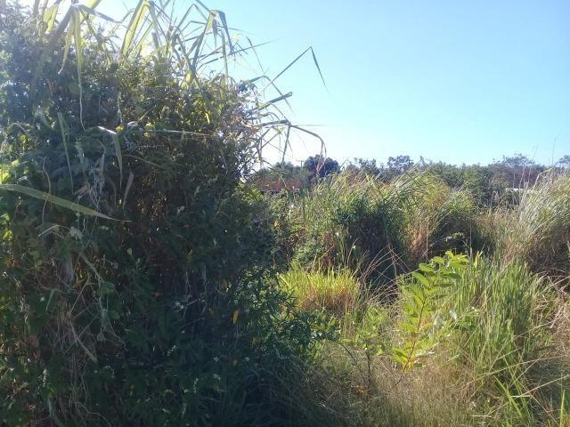 T Ótimo Terreno no Bairro Itatiquara em Araruama/RJ - Foto 4