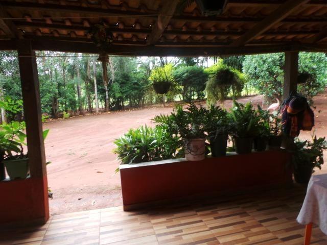 Fazenda 15 Alqueires Municipio Cocalzinho Aceita Imovel até 200 mil - Foto 7