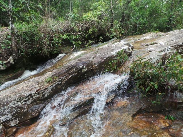 Fazenda 132 Alqueires Municipio Cocalzinho Aceita proposta - Foto 4