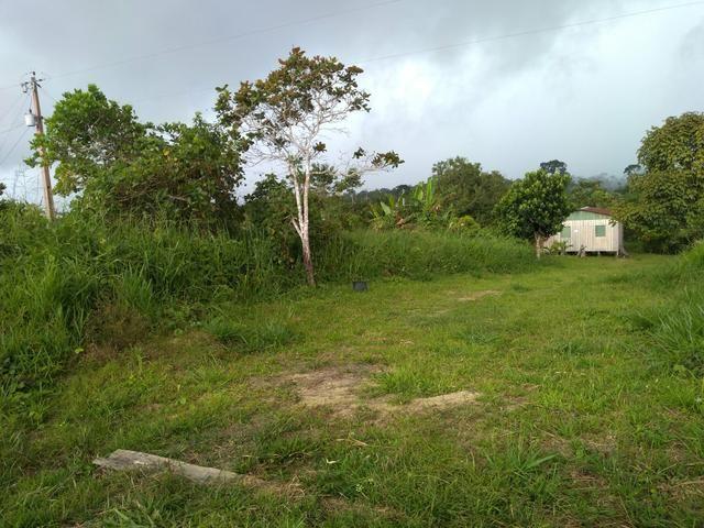 Vendo uma Chácara 14 hectares na BR 364 - Foto 3