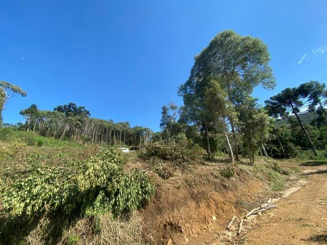 Chácara em bocaiuva do Sul - Foto 4
