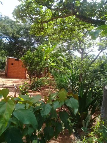 Vendo Chácara na Comunidade Rural de Extrema em Bocaiuva-Mg - Foto 11
