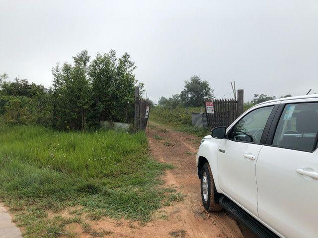 Vendo linda fazenda com 890 hectares na AM-010  liga os municípios de Manaus, Rio Preto  - Foto 16