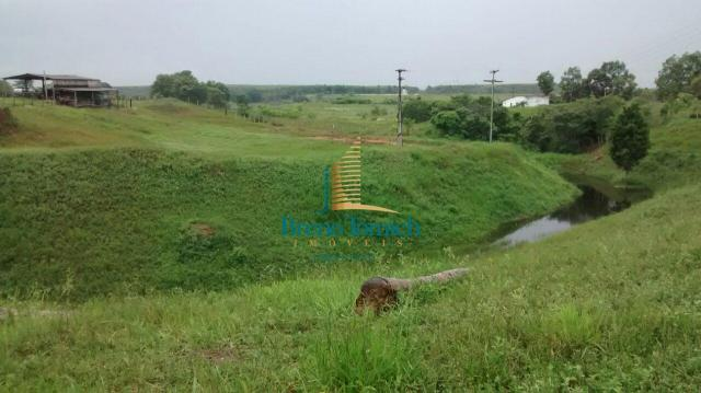 Fazenda à venda, 890000 m² por r$ 1.300.000 - teixeira do progresso - mascote/ba - Foto 11