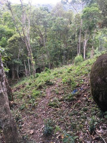 Terreno no Cedro (interior Camboriú) - Foto 5