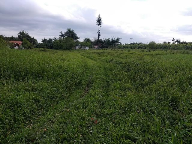 Área Rural em Joinville 105.472,71 m2 - Foto 3