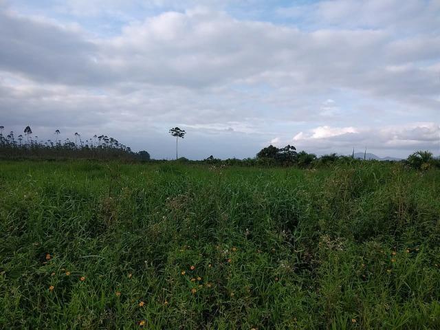 Área Rural em Joinville 105.472,71 m2 - Foto 2