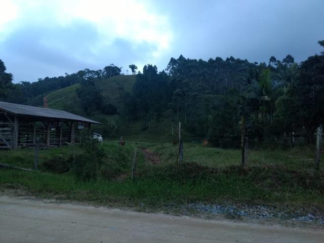 Oportunidade, sitio de 17.000 m² no Caetés interior de Camboriú 14 km da cidade por apenas - Foto 5