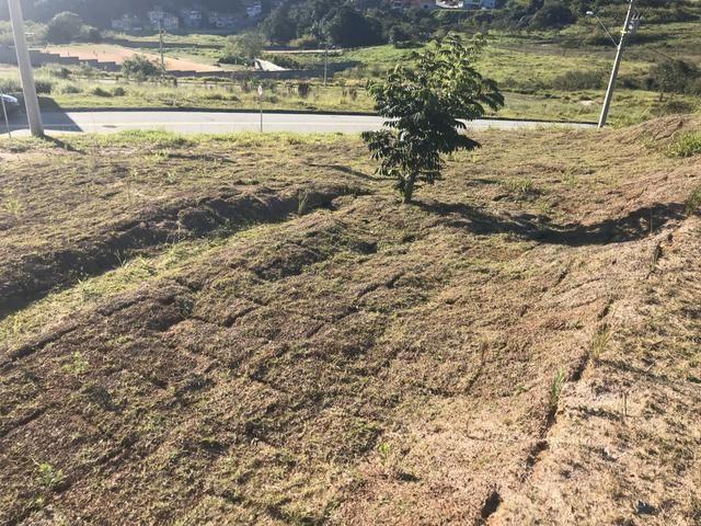 Terreno Barato - Foto 6