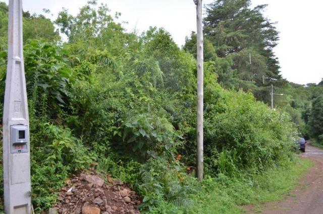Terreno à venda, 888 m² por r$ 170.000,00 - vale dos pinheiros - gramado/rs - Foto 2