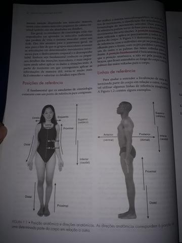 Cinesiologia Estrutural - Foto 3