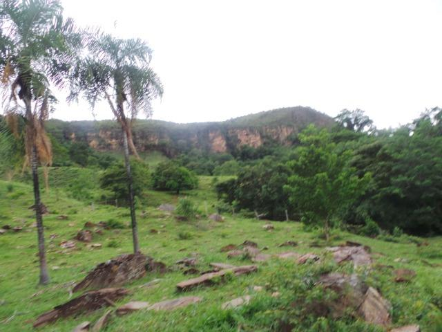 Fazenda 15 Alqueires Municipio Cocalzinho Aceita Imovel até 200 mil - Foto 10