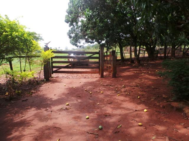Fazenda 15 Alqueires Municipio Cocalzinho Aceita Imovel até 200 mil