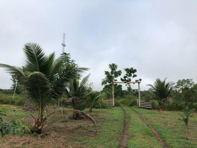 Vendo linda fazenda com 890 hectares na AM-010  liga os municípios de Manaus, Rio Preto  - Foto 10