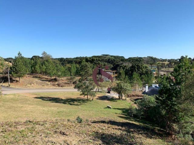 Casa com 3 dormitórios à venda, em Gramado/RS. - Foto 7