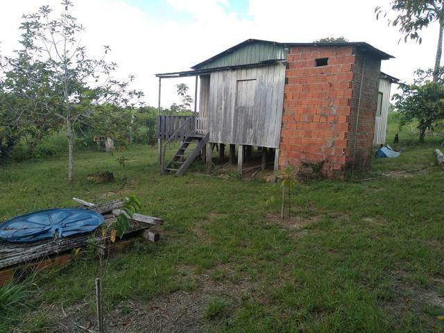 Vendo uma Chácara 14 hectares na BR 364 - Foto 4