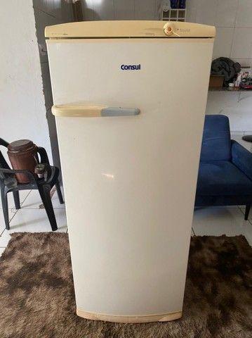 Geladeira cônsul degelo seco completa (ENTREGO )