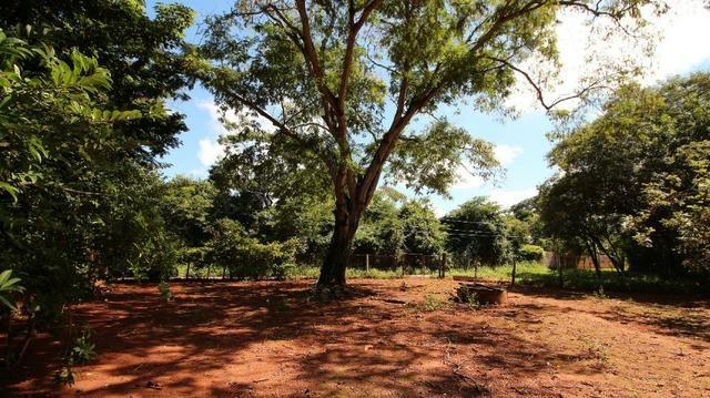 Área 3.775 m² Próximo a UFG Campus Samambaia P/ Lazer e moradia! Oportunidade - Foto 9
