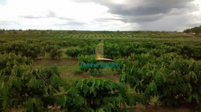 Fazenda à venda, 890000 m² por r$ 1.300.000 - teixeira do progresso - mascote/ba - Foto 17
