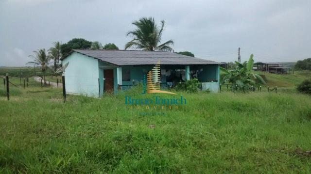 Fazenda à venda, 890000 m² por r$ 1.300.000 - teixeira do progresso - mascote/ba - Foto 5