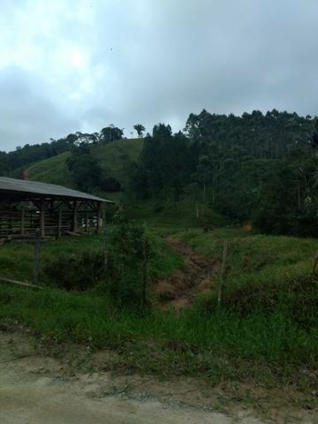 Oportunidade, sitio de 17.000 m² no Caetés interior de Camboriú 14 km da cidade por apenas - Foto 3