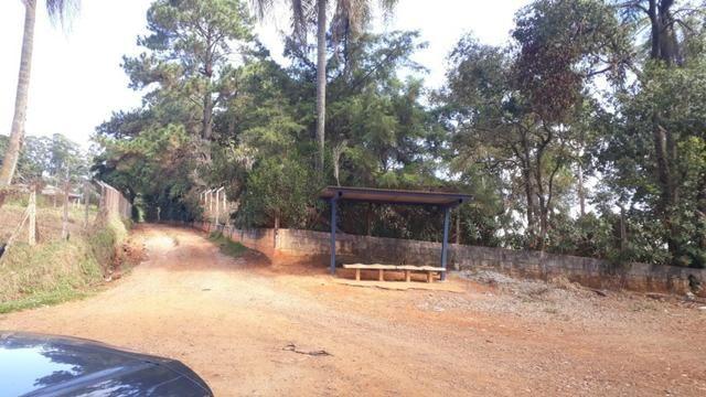 Lotes plainos em Bragança Pta - Foto 5