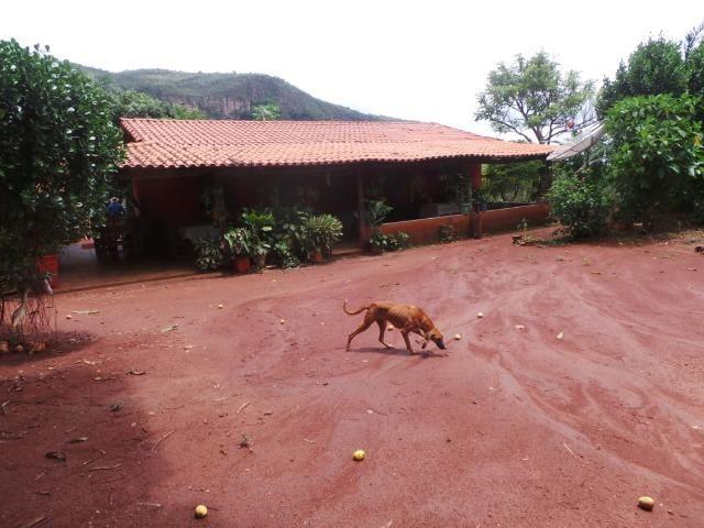 Fazenda 15 Alqueires Municipio Cocalzinho Aceita Imovel até 200 mil - Foto 5