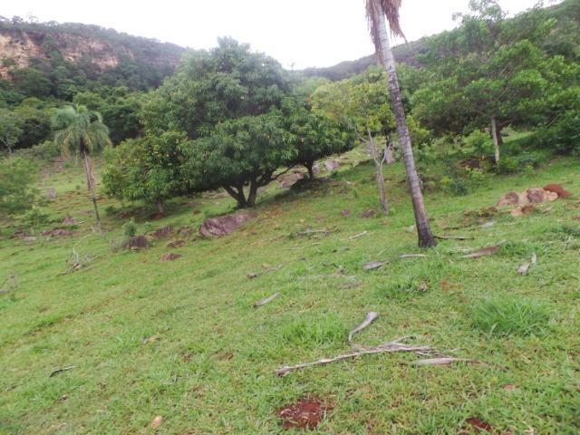 Fazenda 15 Alqueires Municipio Cocalzinho Aceita Imovel até 200 mil - Foto 14