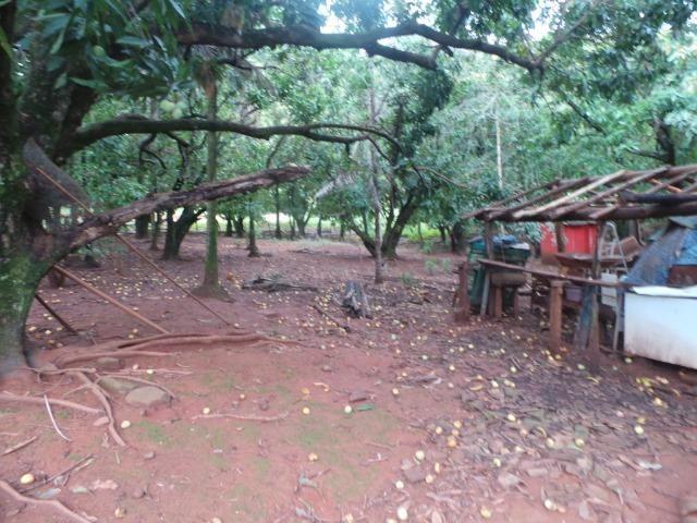 Fazenda 15 Alqueires Municipio Cocalzinho Aceita Imovel até 200 mil - Foto 12